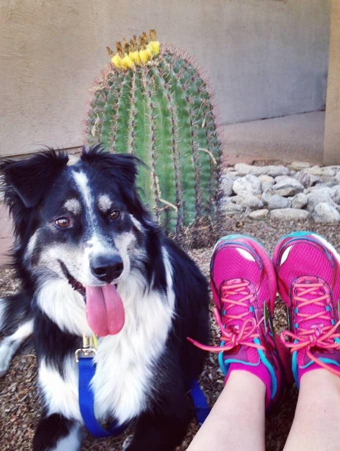 Half Marathon Training - Week 6 : So Very Blessed