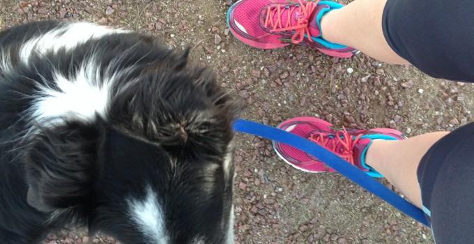 Half Marathon Training – Week 9