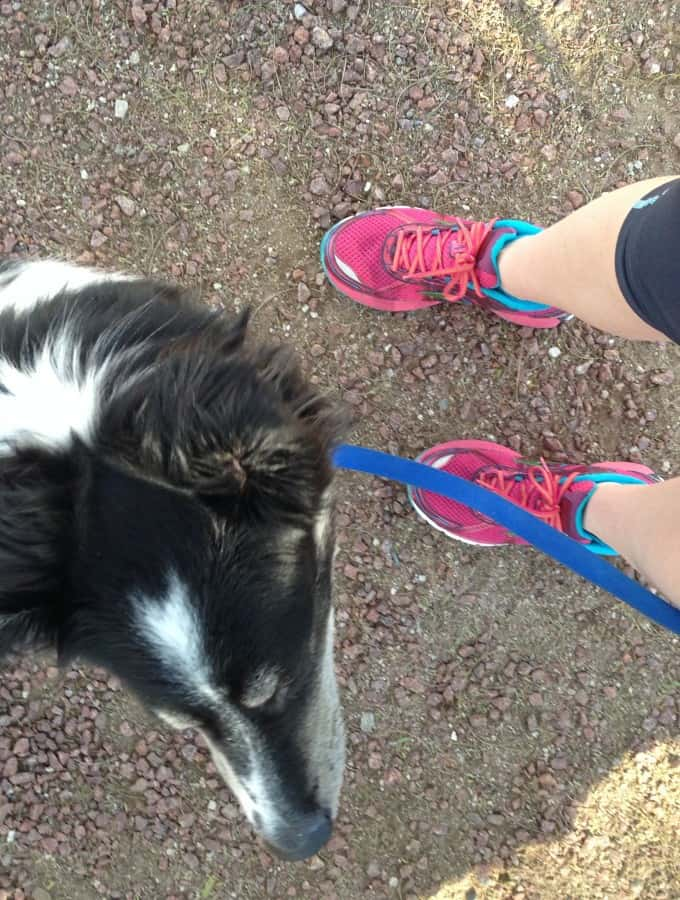 Half Marathon Training - Week 9 : So Very Blessed