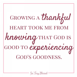 30 Days of Gratitude Challenge 2016 : So Very Blessed – Come join us for this free challenge during the month of November! Just take a few minutes a day and you will boost your health, faith, happiness, and cultivate a greater heart of thankfulness.
