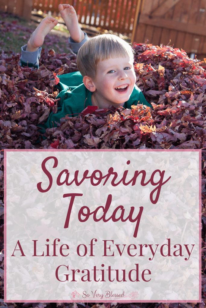 Savoring Today - A Life of Everyday Gratitude : So Very Blessed - Every single day is a gift full of blessings. Don't miss them!